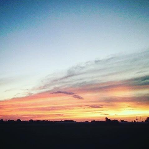 農業やってると天候や自然に合わせて生きるのですが、思い通りになんて全くならなすぎて笑える程ですしかし、空の表情と風の匂いが、殆どのことを教えてくれる気もします (from Instagram)
