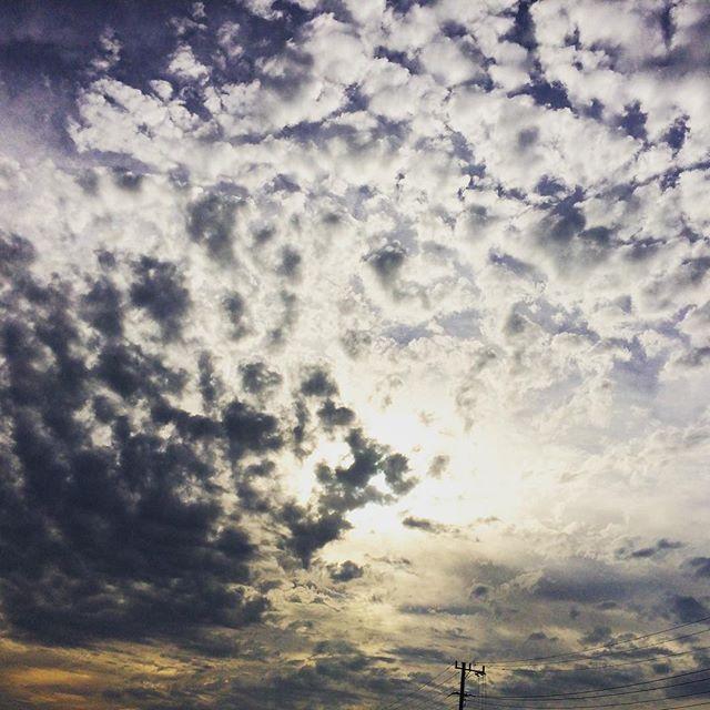 羊雲なのか、鰯雲なのか、鱗雲なのか、よく分かりませんが、秋の空は豊かです🐏 (from Instagram)