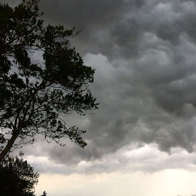 日本の稲と雷は実はベストコンビなんです️現代人にはあまり知られてませんが雷が落ちた田んぼのお米は素晴らしく美味しくなります女心は未だ勉強中ですが秋の空はホント面白い!さっきまで晴れてたのに、でもこんな雲の表情が豊かさの象徴だと思います️雲のおかげで涼しく仕事できますね^_^ (from Instagram)